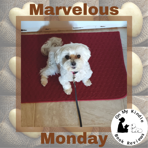 Marvelous Monday with Lexi: August 19th Edition