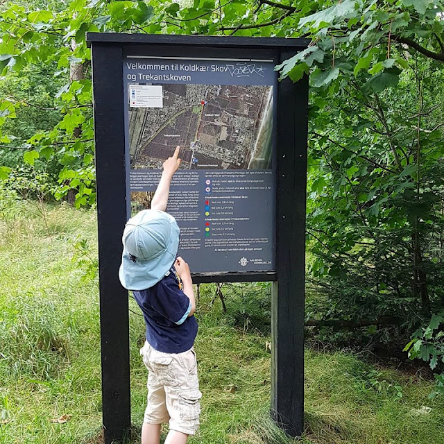 Unsere 11 besten Ausflugstipps für die Ostseeküste Nordjütlands. Im Koldkaer skov weisen Hinweistafeln und gut gekennzeichnete Wege den Besuchern den Pfad durch den Wald zur Ostsee.