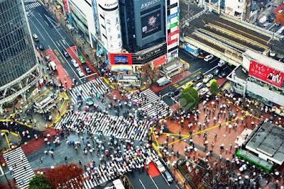 Resultado de imagen de reseña libro ultimo verano en tokio