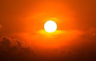 sun-bio-data