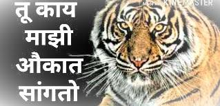 marathi status attitude