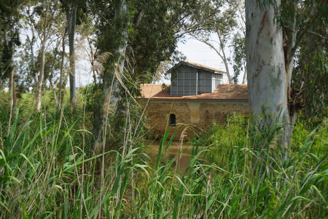 טחנת הקמח של אבו רבאח