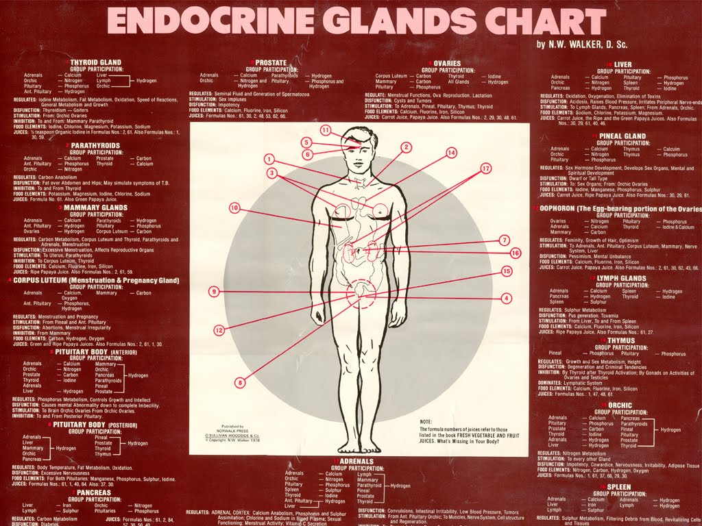 Clinical Chemistry 41 C Endocrinology Toxicology And
