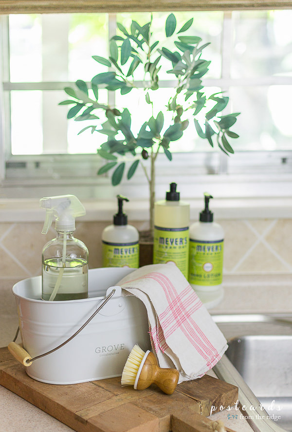 cleaning supplies at kitchen sink