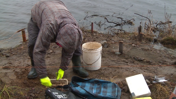 Canadian archaeologists examine 2,200 year old Indigenous site