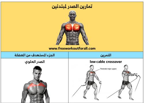 تمارين الصدر العلوي