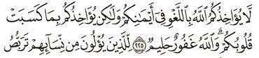 Tafsir Surat Al-Baqarah Ayat 221, 222, 223, 224, 225