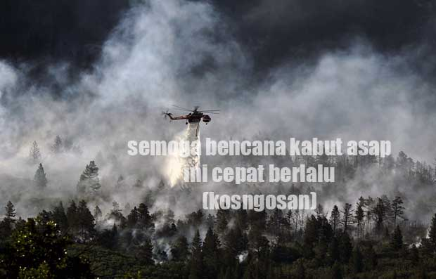 kata mutiara kebakaran hutan