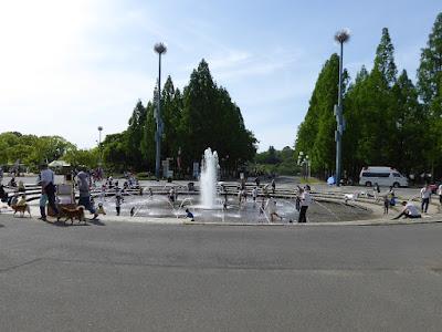 花博記念公園鶴見緑地の噴水