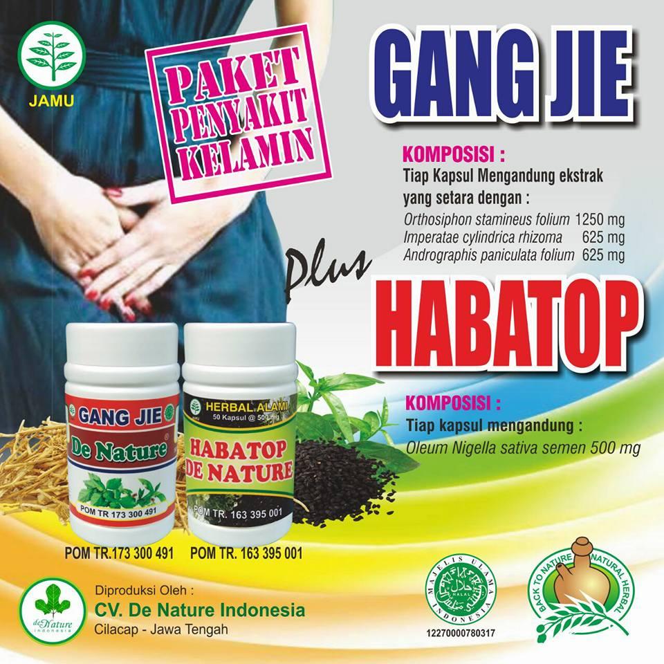 Obat Sipilis Herbal de Nature Murah Mudah Manjur