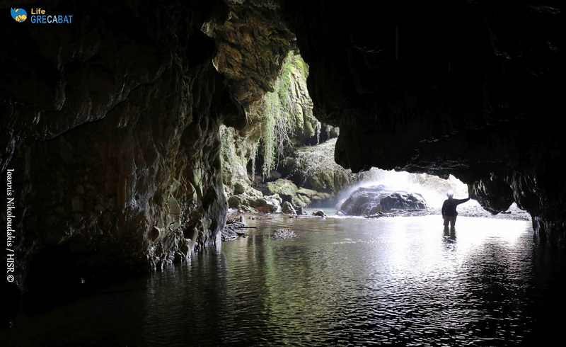LIFE GRECABAT: Εκπαιδευτικό υλικό για τις νυχτερίδες και τα σπήλαια της Ελλάδας