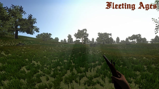 Fleeting Ages PC Full
