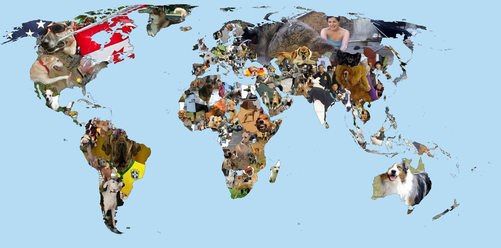 "World map with the first Google image result of ""Country Name"" + ""dog"""