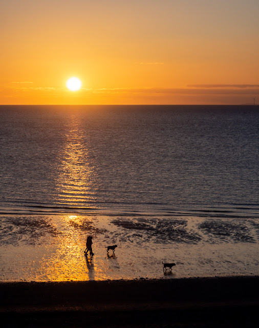 Photo of dog walkers on the shore at Maryport