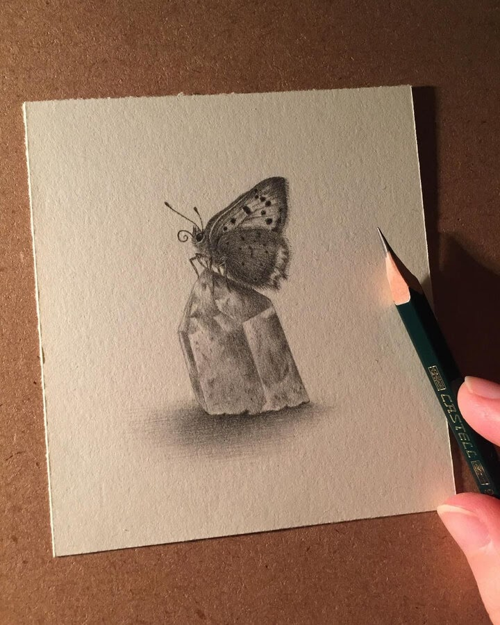 09-Butterfly-on-a-crystal-Katrin-Berge-www-designstack-co