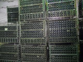 Бахмут. Завод шампанських вин