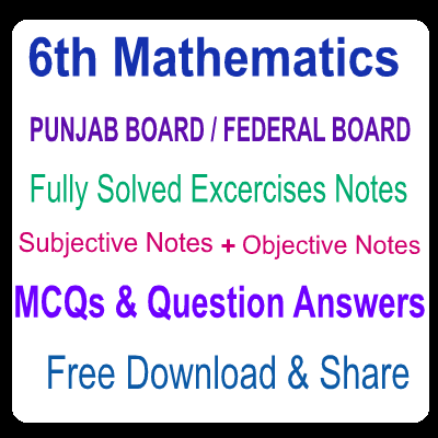 Fully Solved 6th Class Federal Board and Punjab Board Notes Math Excercises