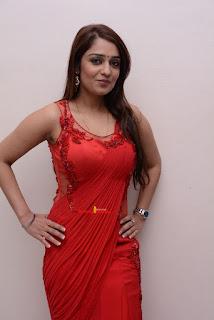 nikitha thukral latest cute stills in saree latest high