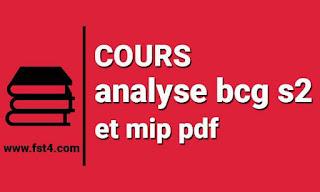 Cours analyse bcg s2 et mip pdf