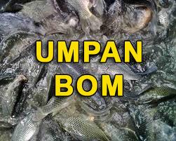 Cara Membuat Umpan Bom Agar Ikan Berkumpul