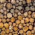 Tổng hợp danh sách đầy đủ Tên và Phân loại các cây gỗ