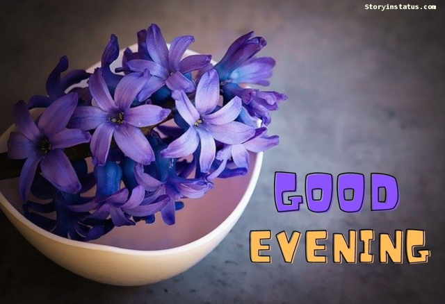 good evening images flowers