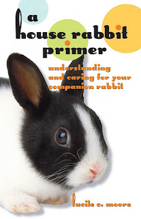 A House Rabbit Primer by Lucile Moore