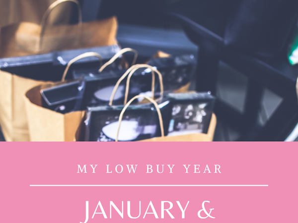 My Low Buy Year | Update #1