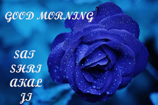 GOOD MORNING SAT SHRI AKAL Ji