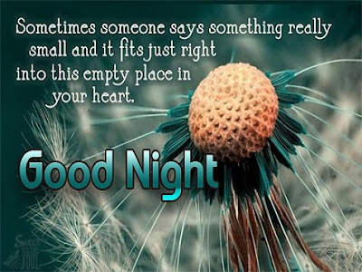 Romantic Good Night SMS | Good Night Love SMS