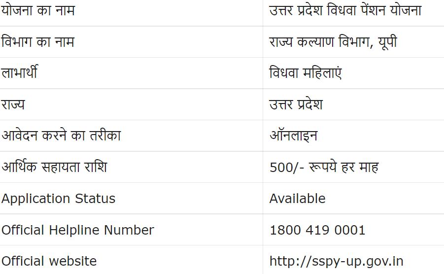 All Details For Vidhwa Pension Yojana in Hindi