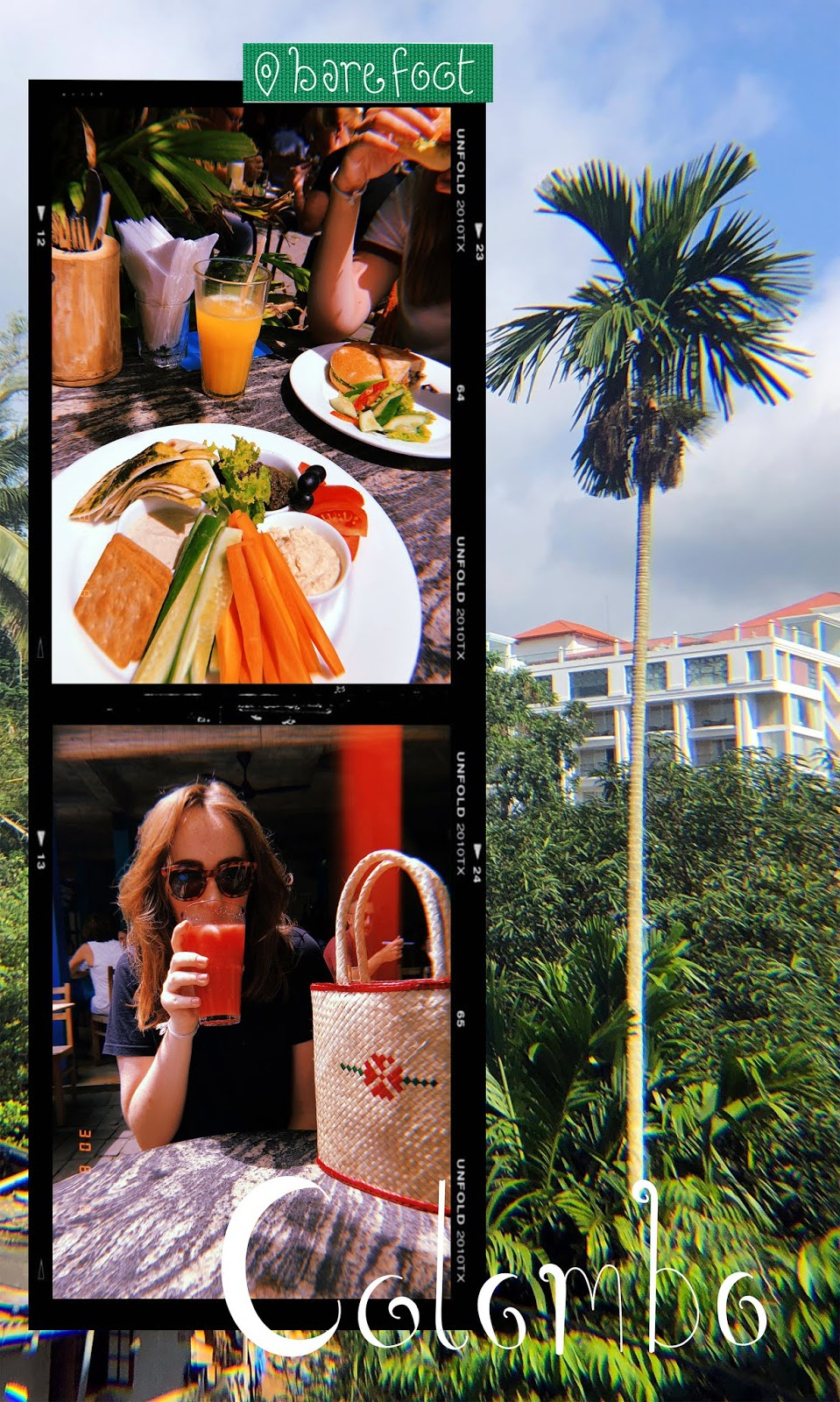 photos of food and drink from barefoot cafe Colombo against palm tree photo background
