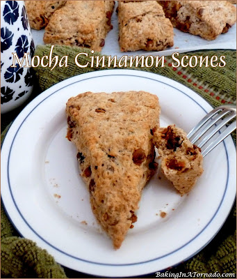 Mocha Cinnamon Scones, coffee flavored scones studded with dark chocolate and cinnamon, a perfect complement to that morning coffee. | Recipe developed by www.BakingInATornado.com | #recipe #breakfast