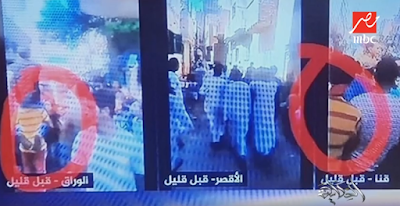 قناة الجزيرة, فشل المظاهرات, فيديوهات ملفتة,