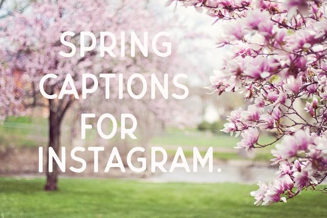 Best Spring Captions for Instagram