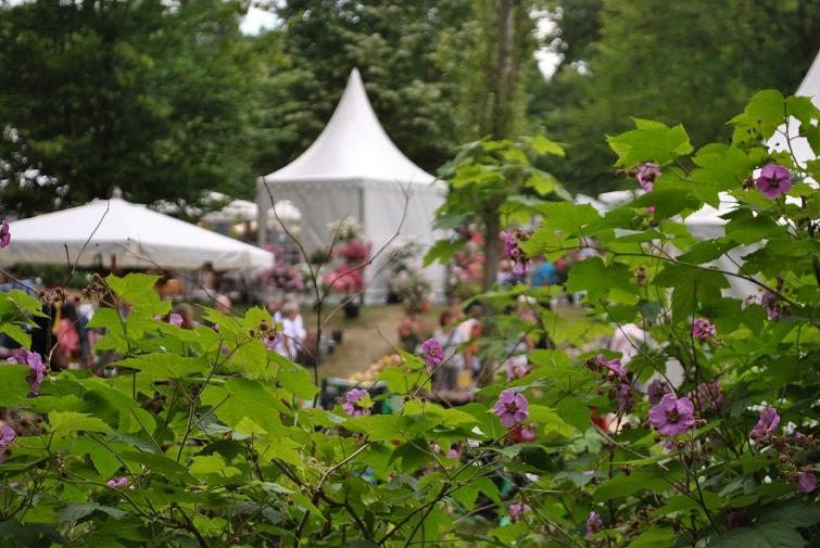 Impressionen Garten Messe
