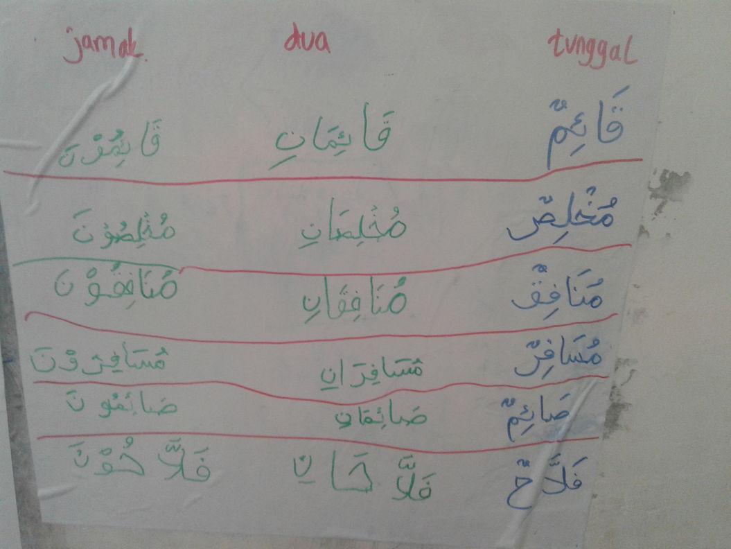 Belajar Bahasa Arab Mufrad Dan Jamak Mudzakkar Saalim