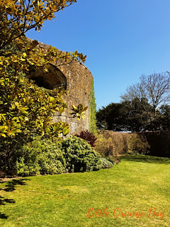 Walmer Castle Kent Moat