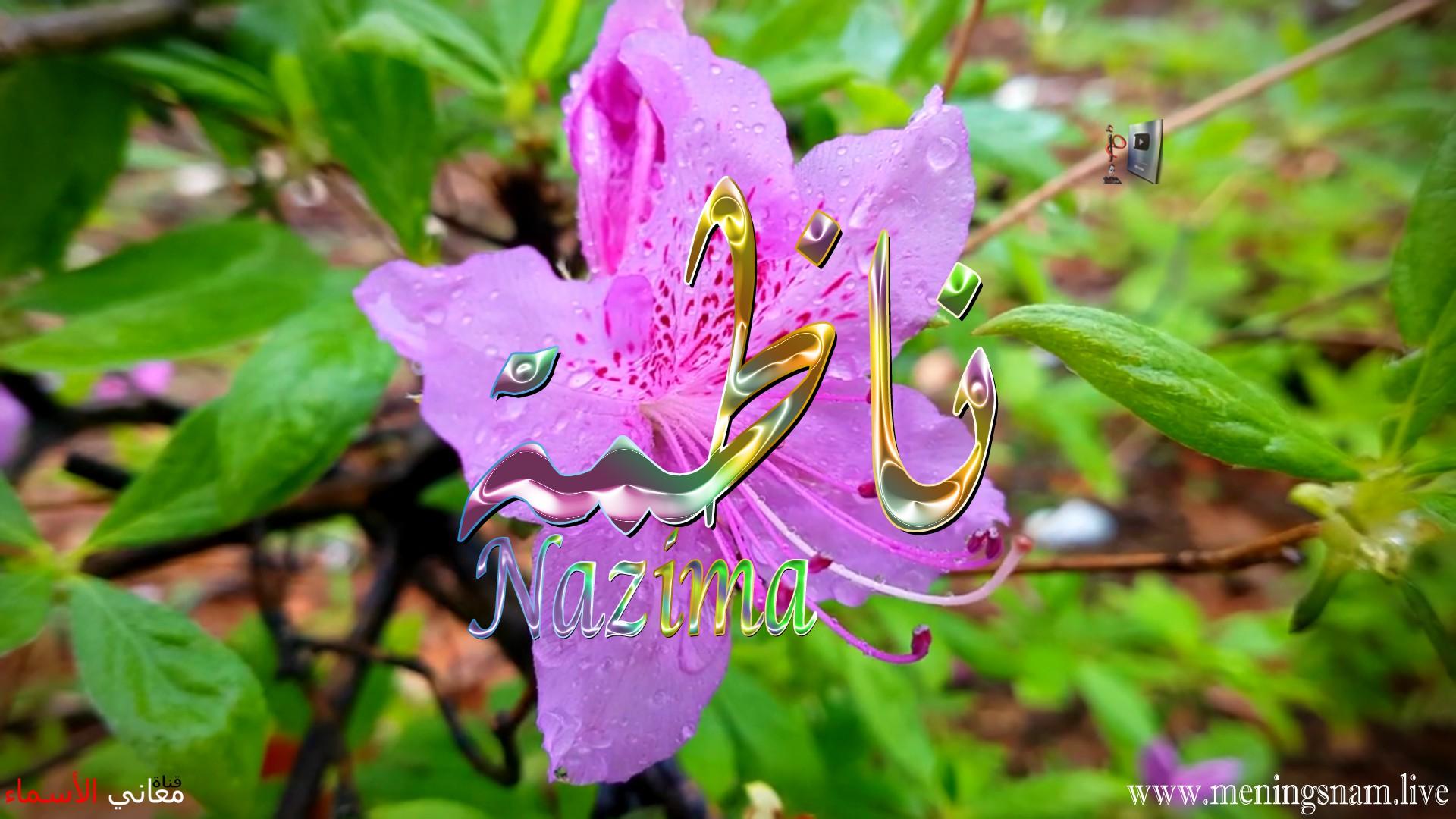معنى اسم ناظمة وصفات حاملة هذا الاسم Nazima