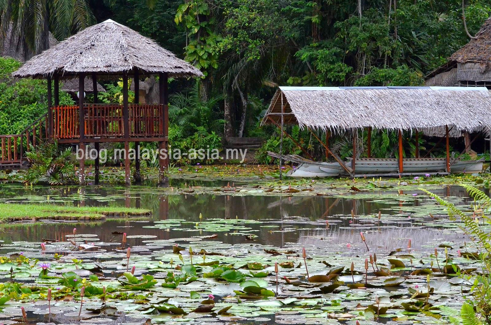 Botanical Gardens Sabah Museum