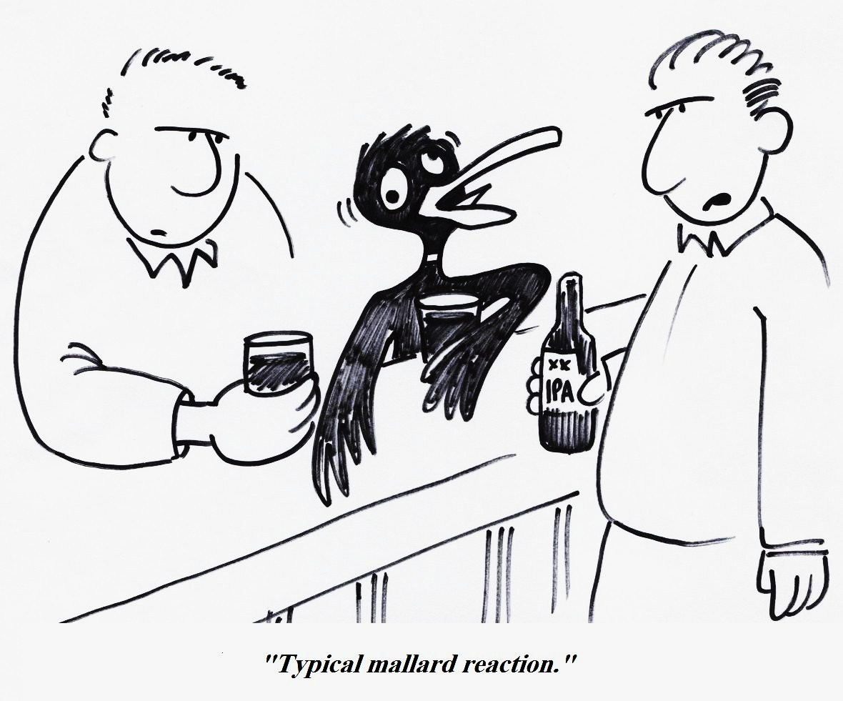 Organic Chemistry Cartoon