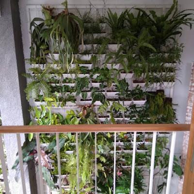 taman vertikal di pot