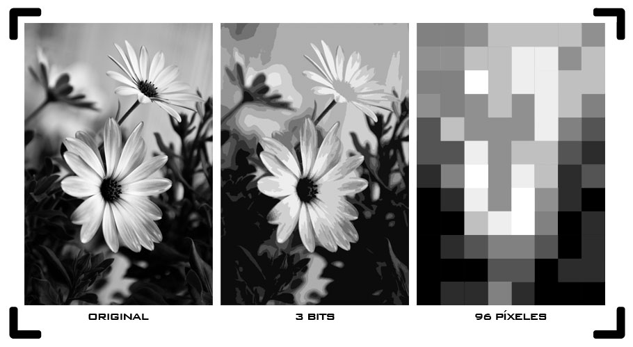 Imagen convertida a 3 bits y 96 píxeles