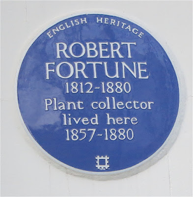 sign from Robert Fortune's house in London