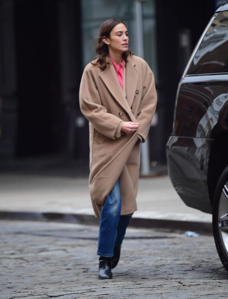 Alexa Chung Clicked Outside  in New York 31 Jan-2020