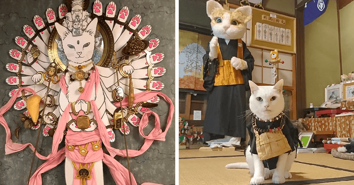 There Is A Japanese Cat Shrine, And Its Monks Are Adorable