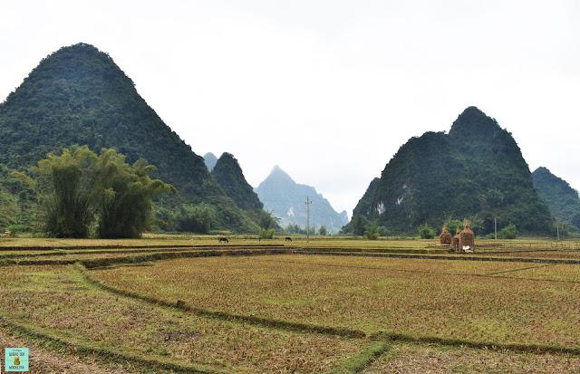Phong Nam Valley, Cao Bang