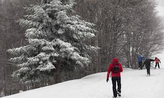 Δείτε πού χιονίζει ΤΩΡΑ - «Ζωντανή» εικόνα από όλη την Ελλάδα