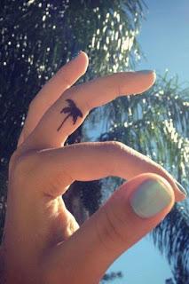 Tatuaje pequeño de palmera