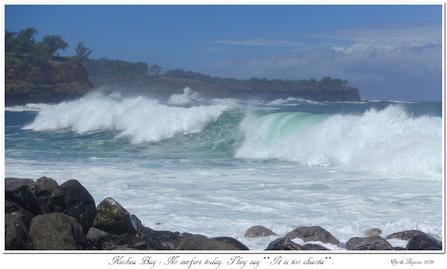 Keokea Bay:  No surfers today. They say: It is too chaotic.